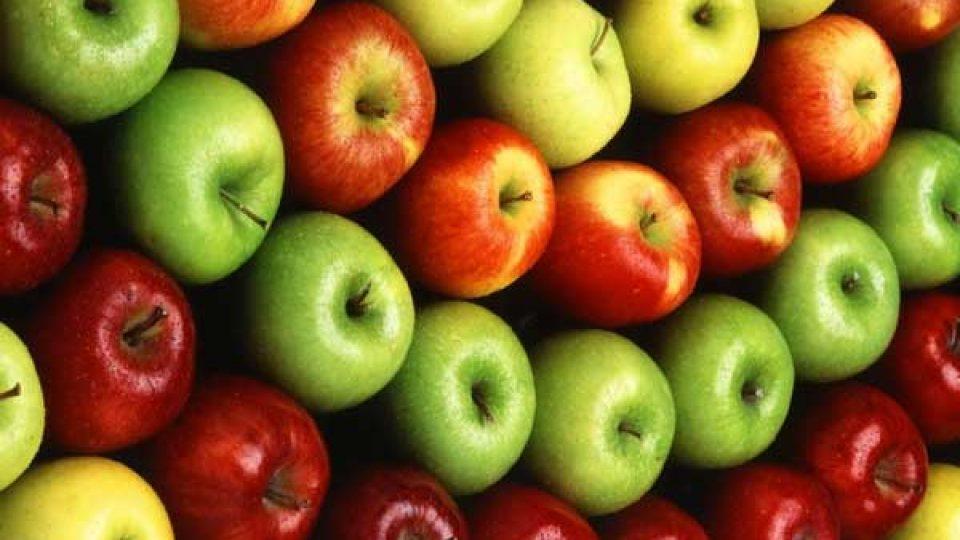 food-cluster-maakt-regio-weer-koploper-in-voeding
