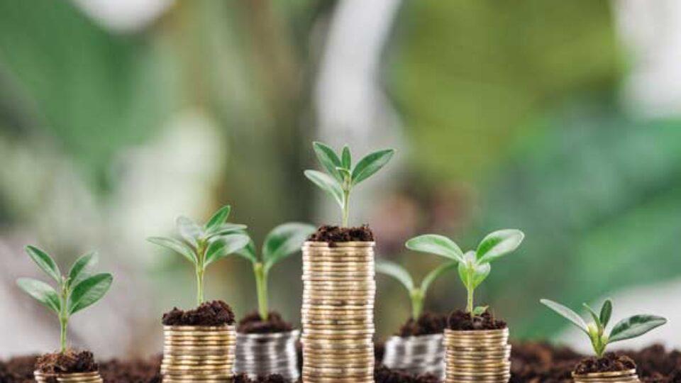Rotterdam investeert 100 miljoen in duurzame bedrijven